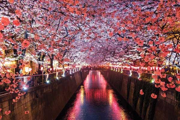 Tokyo, Japan ~ Aldebaran Crystal Codes~ May 16, 2018~ WEBINAR