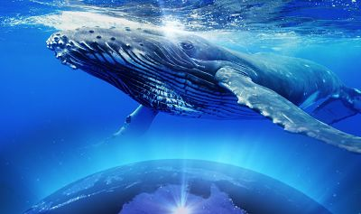 You are Paradigm Shifters!~ Cosmic Whale Grandmothers